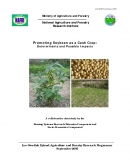 Promoting Soybean as a Cash Crop: Determinants and Possible Impacts.