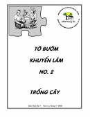 To buom Khuyen Lam so 2: Trong Cay