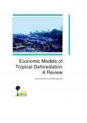 Economic Models of Tropical Deforestation: A Review